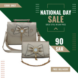 Luxurious Hand Bag and Trendy Chain Sling Bag Combo